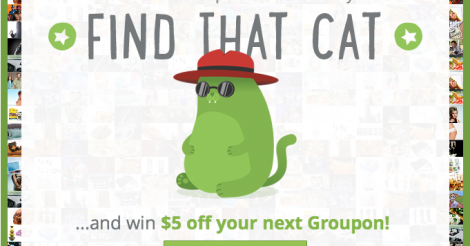 find that cat groupon