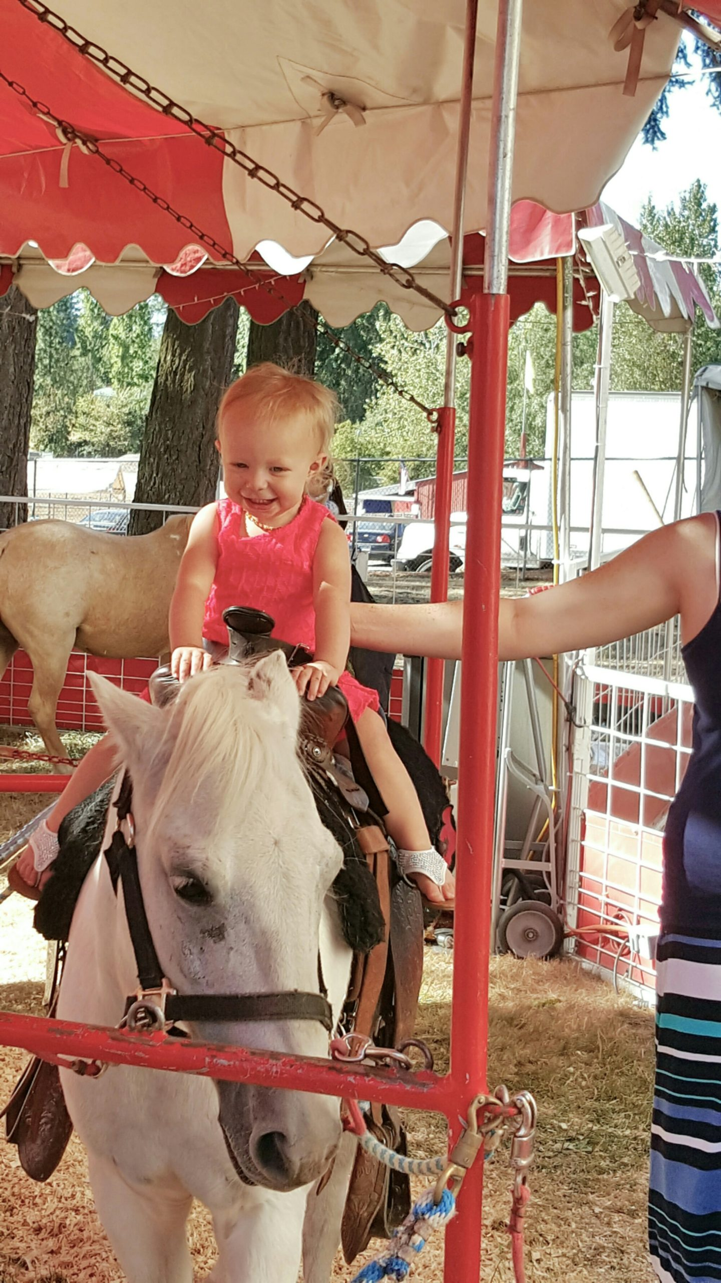 2 Days of Fun at the Clark County Fair in Ridgefield, WA