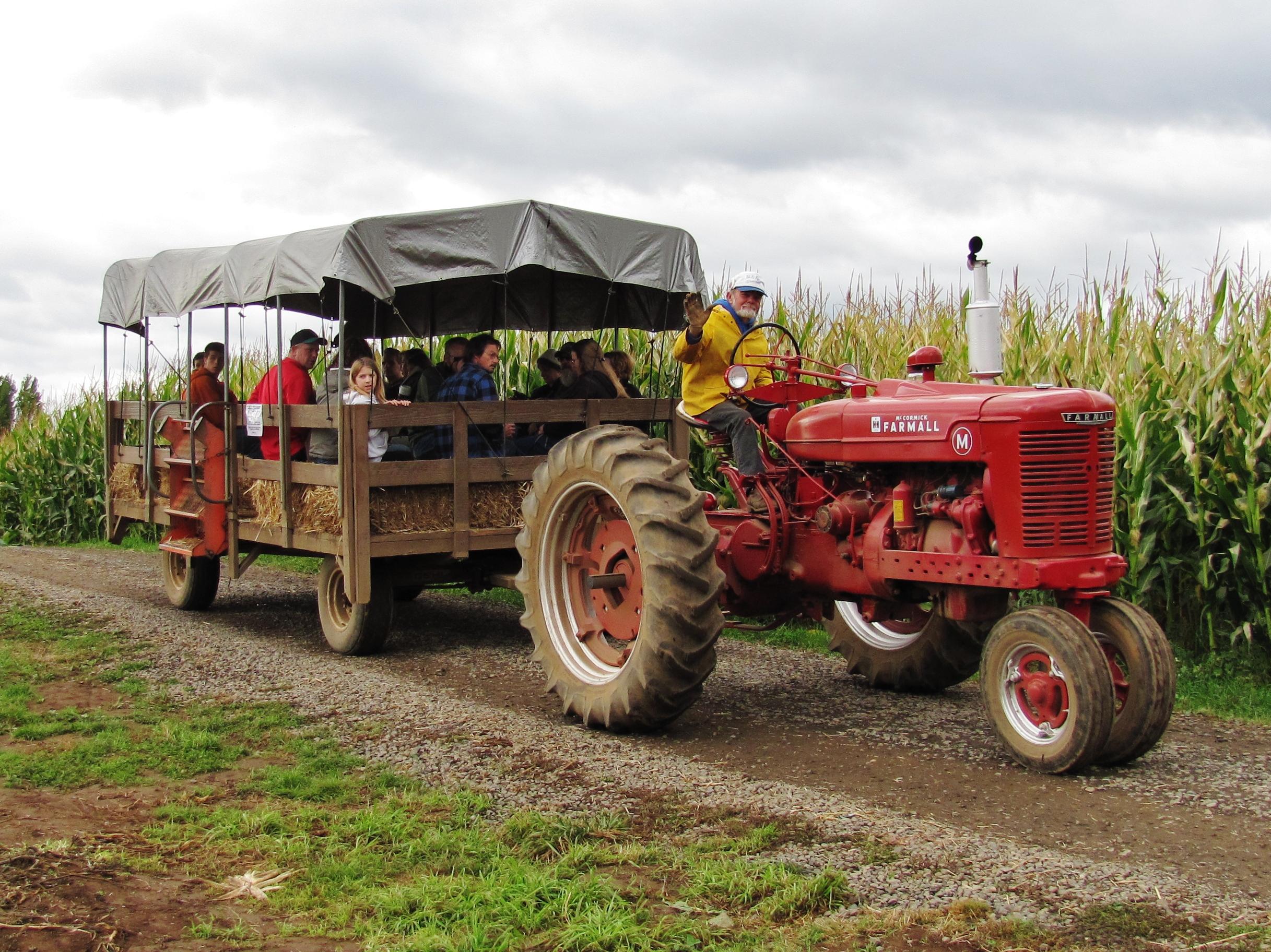 bi-zi farms