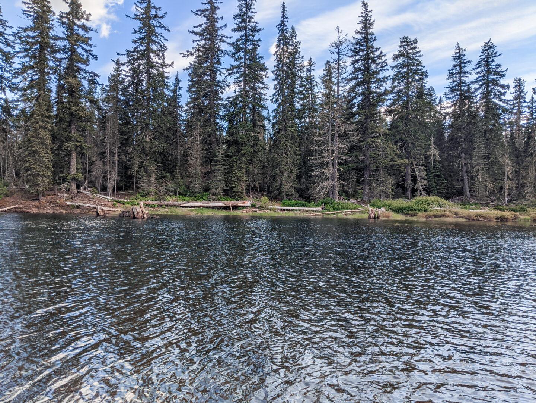 Goose Lake, Wa campgrounf